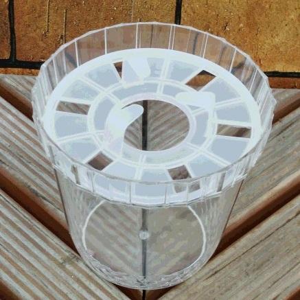 期間限定お試し価格 奉呈 水栽培ポット ヒヤシンス1球用 1鉢