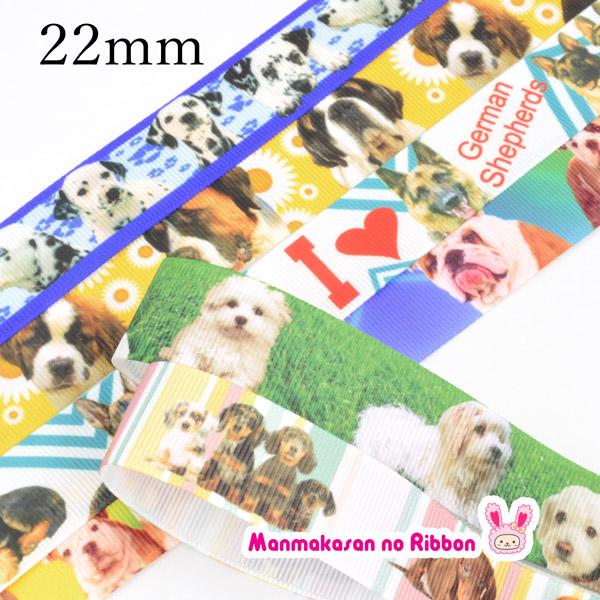 【PC】22mm レアリボン ★ 可愛いわんちゃんのリボン(全13種) 2m 再入荷なし