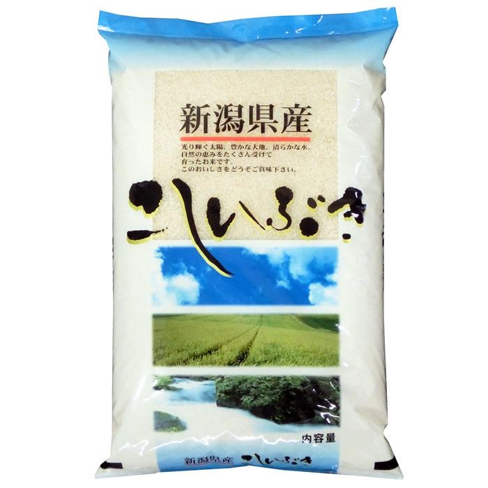 予約販売 新米 越後の米 令和3年産 新潟県産 こしいぶき 賜物 最新号掲載アイテム 米粉加工 無洗米加工 玄米 選択可 白米5kgx1袋 保存包装