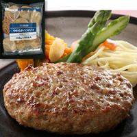 冷凍 やわらかハンバーグ 100G 10食入 期間限定お試し価格 本店 ハンバーグ ヤヨイサンフーズ