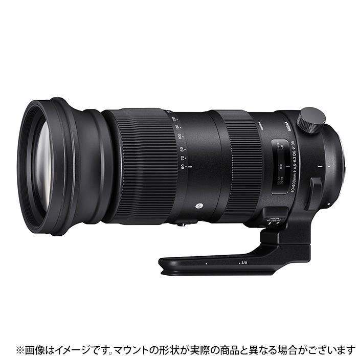 《新品》SIGMA (シグマ) S 60-600mm F4.5-6.3 DG OS HSM(ニコン用)[ Lens | 交換レンズ ]【KK9N0D18P】