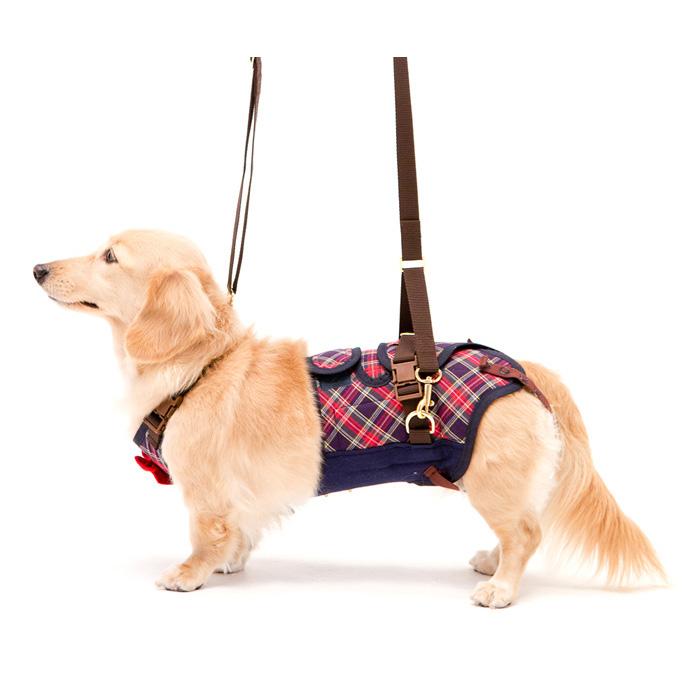 歩行補助ハーネスLaLaWalk 小型犬・ダックス用サポーターパッド付 チェックカーニバル M