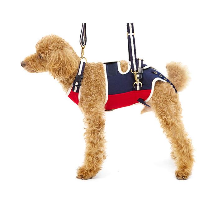 歩行補助ハーネスLaLaWalk小型犬・ダックス用 ロイヤルスクール M