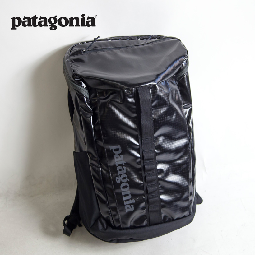 bbae9ab575 MARC ARROWS  patagonia Patagonia Black Hole Pack 25L black hole pack ...