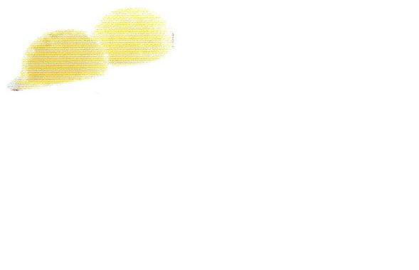 パート・ド・フリュイ 青りんご100個入り(国内製造品)