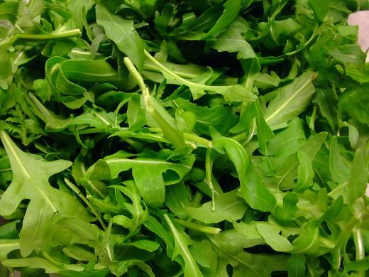 イタリア産 ルッコラ(ルーコラ) セルバチコ(セルバティカ)250g 味・香りが違います。