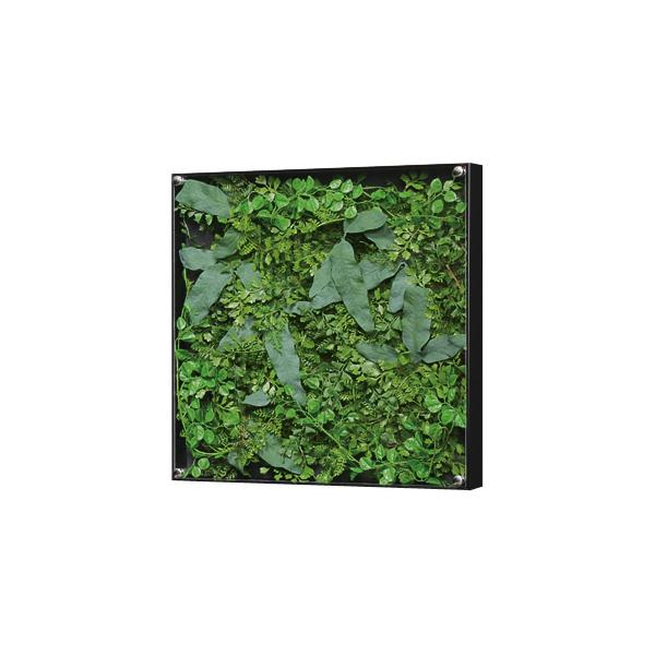 ] DECO 3305 グリーンシリーズ[ WALL インテリアアート □■  ■□  interior GREEN