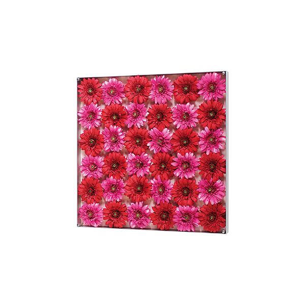 ] DECO  FLOWER  インテリアアート ■□ interior □■ フラワーシリーズ[ 3584
