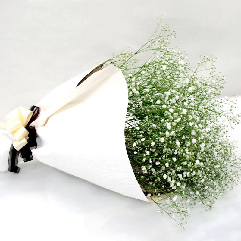 7日前予約品 あなたのためだけに最高のカスミソウを求めて買い付けします かすみそうだけの花束 カスミ草の花言葉 感謝 送料無料 かすみ草 ブーケ ウェディング の 花束 生花 カスミ草 フラワーギフト お祝い 高級な お誕生日 カスミソウ 結婚式 贈り物 結婚祝い 女性 母 お見舞い 還暦祝い ギフト ボリューム プレゼント 推奨 お花 母の日 女友達 発表会 退職祝い