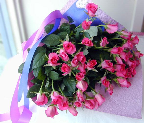 ローズピンクのバラの花束 50本 生花 バラの花束 華やかなピンク 送料無料 予約 誕生日祝い 結婚祝い 開店祝い 発表会 母の日