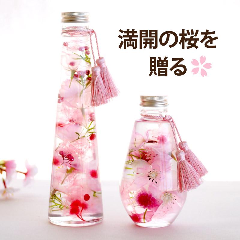 桜ハーバリウムL