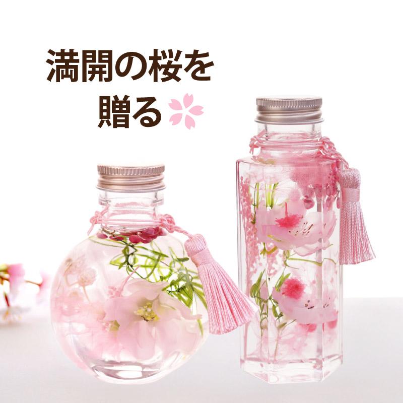 桜ハーバリウムS