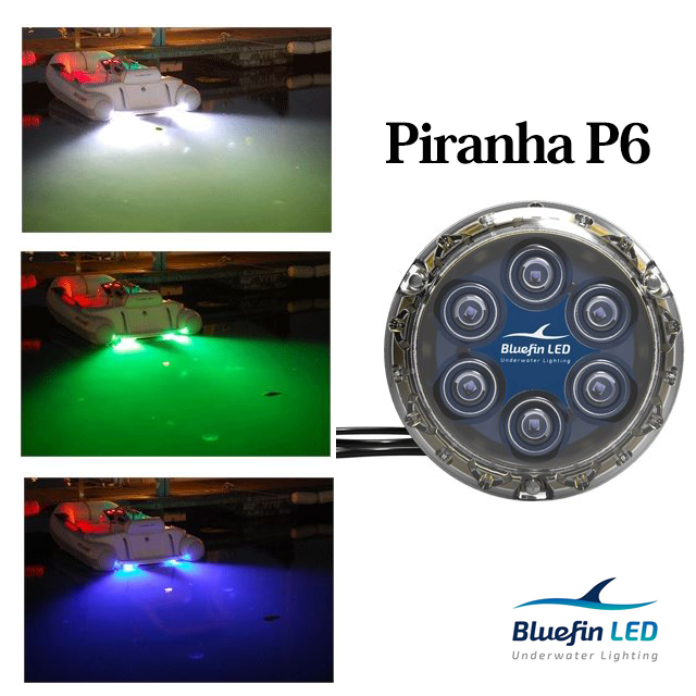 12Vまたは24V LED ボートライトPiranha P6