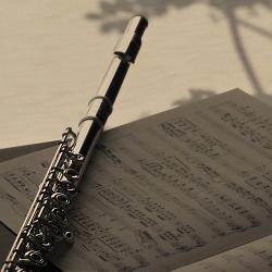 フルート サンキョウ シルバーソニック中学生、高校生が吹奏楽部できちんとしたレベルで吹きたい時にはこのフルートを吹いて下さい。ネット通販でのフルート販売です。管体銀製