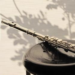 フルート ミヤザワ BR-102E吹奏楽部のフルート購入をネット通販で中学生の最初の1本に!8月末日まで30%OFF!SALE!