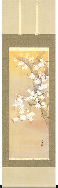 掛け軸 掛軸 桜に小禽(河村 東陽)【送料無料】【代引き手数料無料】