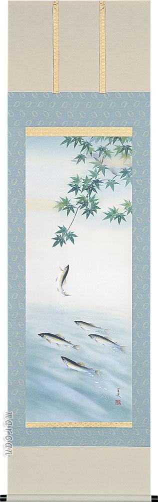 掛け軸 登り鮎(荒川 里史)【送料無料】【代引き手数料無料】