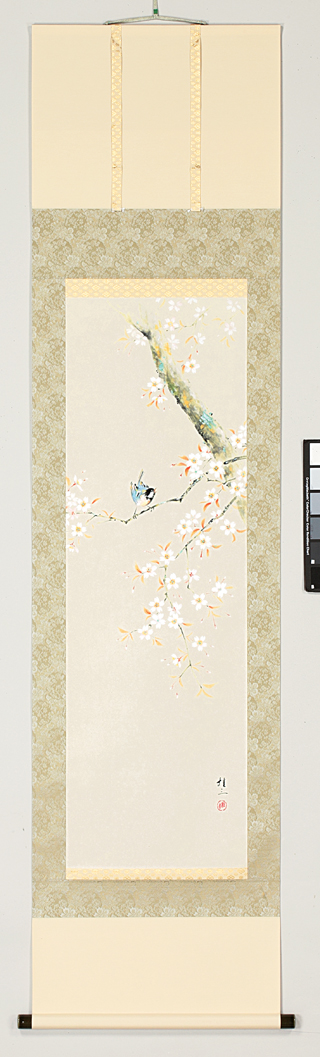 掛け軸 桜に小禽(佐藤 桂三)【送料無料】【代引手数料無料】
