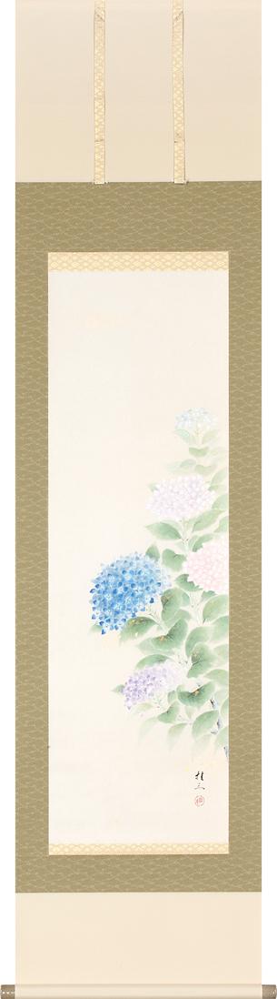 掛け軸 紫陽花(佐藤 桂三)【送料無料】【代引手数料無料】