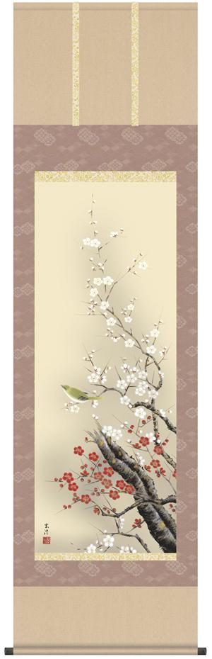 【掛け軸/掛軸/花鳥画】梅に鶯(清水 玄澄)【送料無料】【代引き手数料無料】