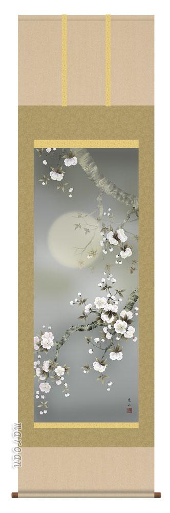 【掛け軸/掛軸/花鳥画】夜桜(緒方 葉水)【送料無料】【代引き手数料無料】