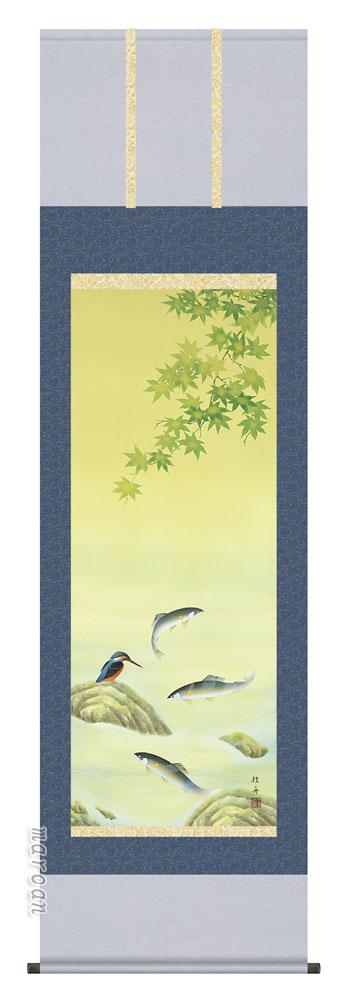 【掛け軸/掛軸/花鳥画】鮎にかわせみ(長江 桂舟)【送料無料】【代引き手数料無料】