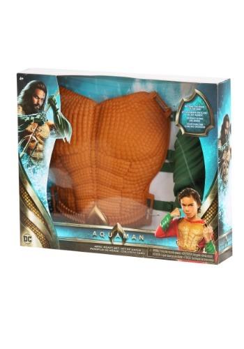 DC Comics Aquaman Hero-Ready Chest & Gauntlet Set クリスマス ハロウィン コスプレ 衣装 仮装 小道具 おもしろい イベント パーティ ハロウィーン 学芸会
