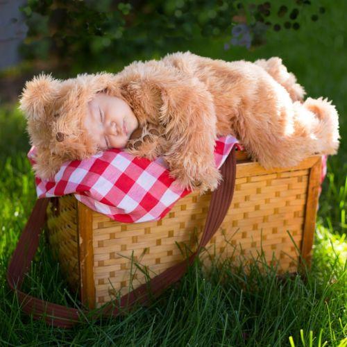 ベイビー クマ 熊Teddy ハロウィン コスチューム コスプレ 衣装 変装 仮装