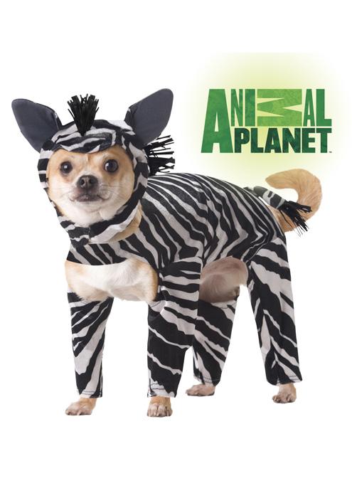 アニマルプラネット Zebra Pet コスチューム クリスマス ハロウィン コスプレ 衣装 仮装 面白い ペット 犬用 学園祭 文化祭 学祭 大学祭 高校 イベント