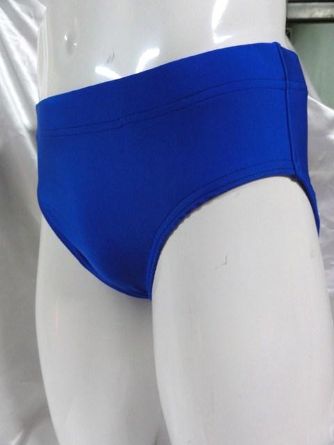シマスポーツ製プロレス ショートタイツ 新日タイプ プロレス パンツ ブルー