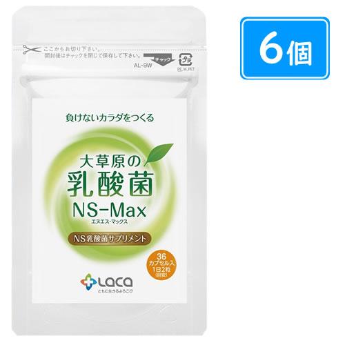 大草原の乳酸菌NS-Max(36粒×6袋)+32粒(8粒×4袋)増量