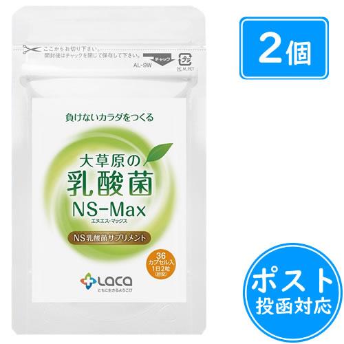 大草原の乳酸菌NS-Max(36粒×2袋)+8粒増量≪ポスト投函:188円≫