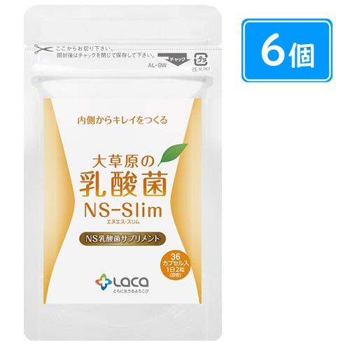 大草原の乳酸菌NS-Slim(36粒×6袋)+32粒(8粒×4袋)増量