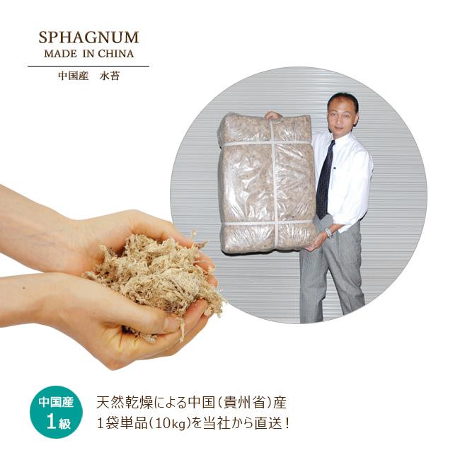 中国産 水苔1級 10kg 業務用 資材 水苔 中国 お買い得 お得 品質蘭 ラン おもと 万年青