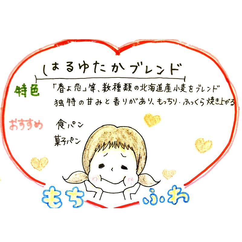 【江別製粉】はるゆたかブレンド(国産強力粉) 25kg