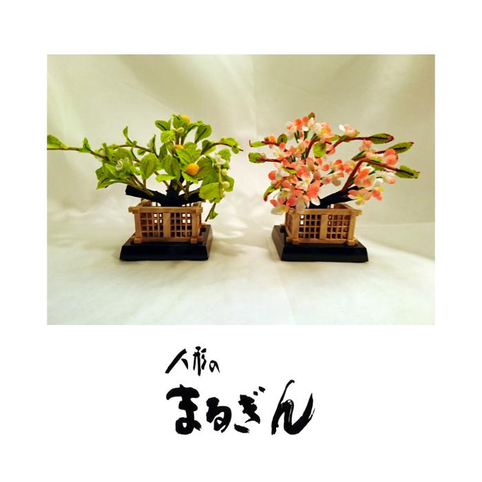 【桜橘セット】20号 若菜 ちりめん 【高さおよそ12cm】雛道具 雛道具単品 桜橘 おひなさま道具 おひなさまのお花