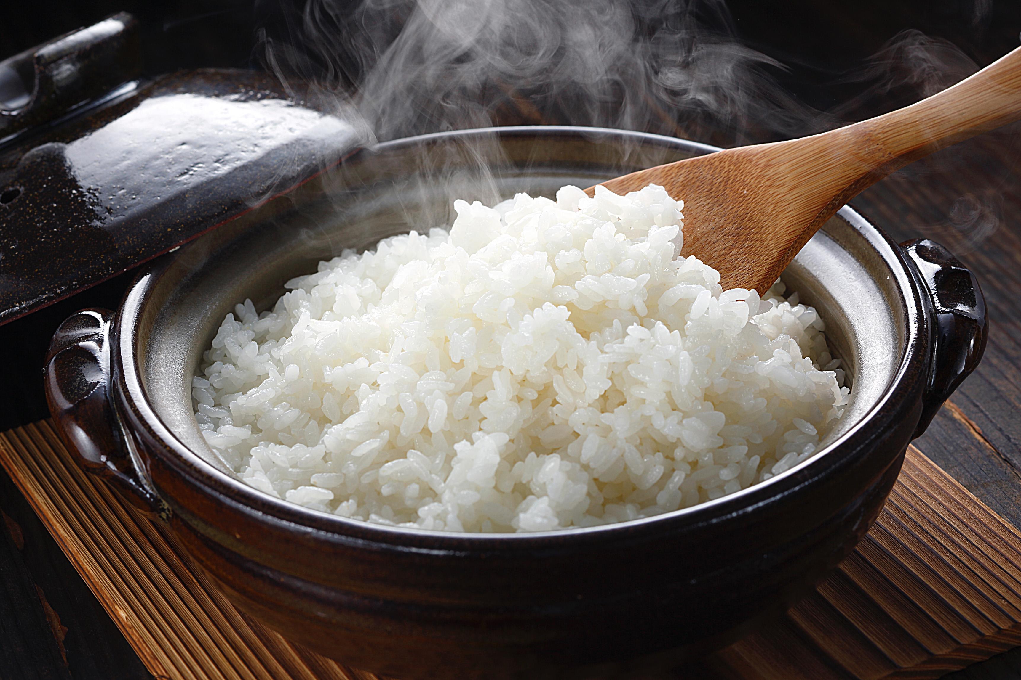 ギフト に 売却 お取り寄せ グルメ 送料無料 御祝 内祝 美味特選米こしひかりセット 代引不可 数量限定アウトレット最安価格