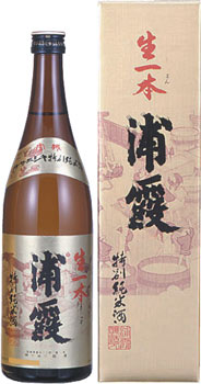 s【送料無料12本入りセット】浦霞 特別純米酒 生一本 720ml カートン入り