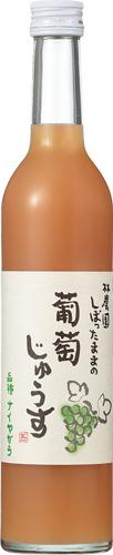 s【送料無料30本入りセット】(長野)林農園 しぼったままの葡萄じゅうす ナイアガラ白 500ml k