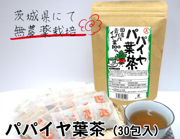 茨城県にて無農薬栽培 アウトレットセール 特集 安心 安全で美容 健康通の方から根強い人気 30包入 国産 送料無料 新品 メール便 国産パパイヤ葉茶