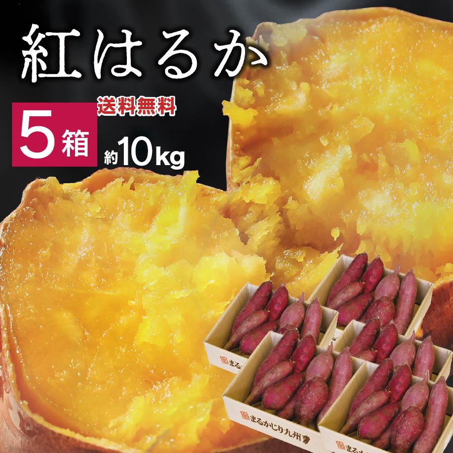 しっとりとした食感 濃厚で甘~い焼き芋ブームの火付け役 紅はるか をさつま芋生産量第1位の鹿児島県の農家から産地直送でお届けします セール 特集 さつまいも 鹿児島 5箱 約10kg 45~75本入 送料無料 サツマイモ べにはるか さつま芋 スイーツ お取り寄せグルメ 焼き芋 干し芋 蜜たっぷり 産地直送 ダイエット 通販 お取り寄せ スイートポテト 箱買い 鹿児島県産 おやつに 時間指定不可 甘い