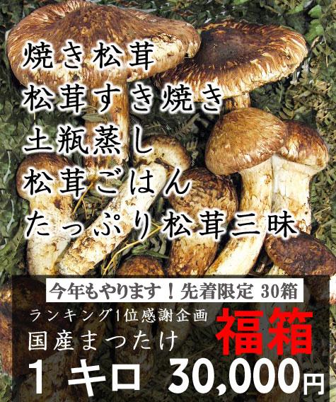 まつたけ福箱 国産岩手の松茸がたっぷり1kg 開き、傷など大きい松茸が主です。1kg【送料無料】【期日指定不可】