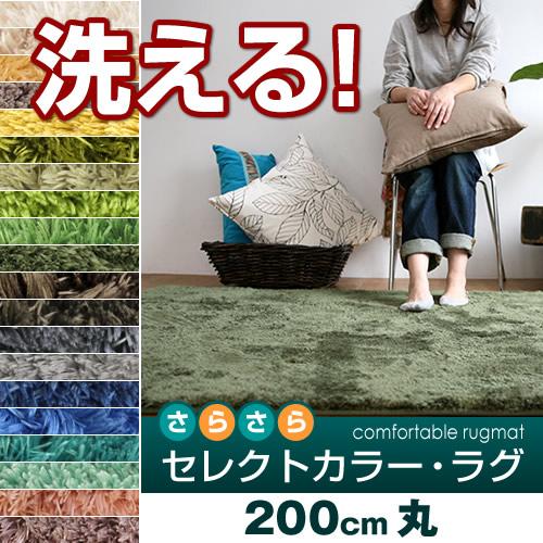 ラグ 円形 丸い 洗える ラグマット カーペット おしゃれ 北欧 モダン 絨毯 夏用 冬用 床暖房 ホットカーペット 対応 グレー グリーン など 約 200 cm 丸
