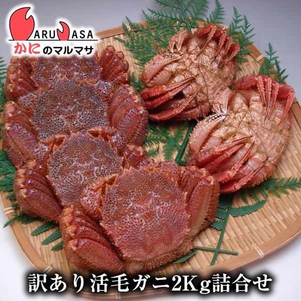北海道産 訳あり活毛がに2kg福袋セット 期間限定激安セール!濃厚なかに味噌!枝幸/釧路産
