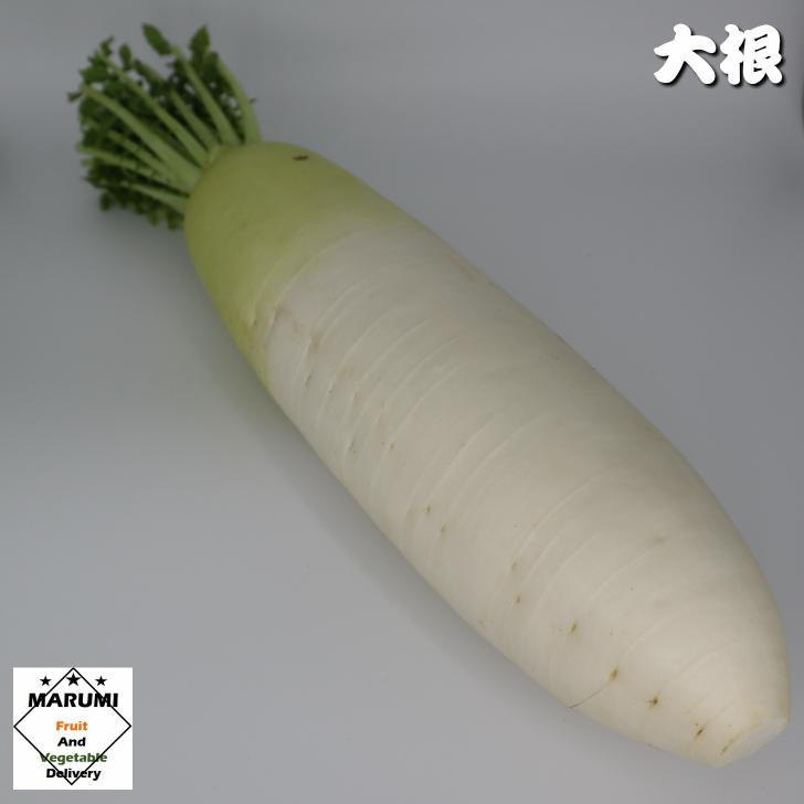 首の部分はビタミンCと食物繊維が豊富 テレビで話題 サラダなどの生食で 甘くてやわらかいまん中の部分は煮ものに 先の部分は辛みが強いので ●日本正規品● 大根おろしや辛みを生かした漬けものにおすすめ 千葉 セット野菜と同時購入で送料無料 大根1本 神奈川 茨城