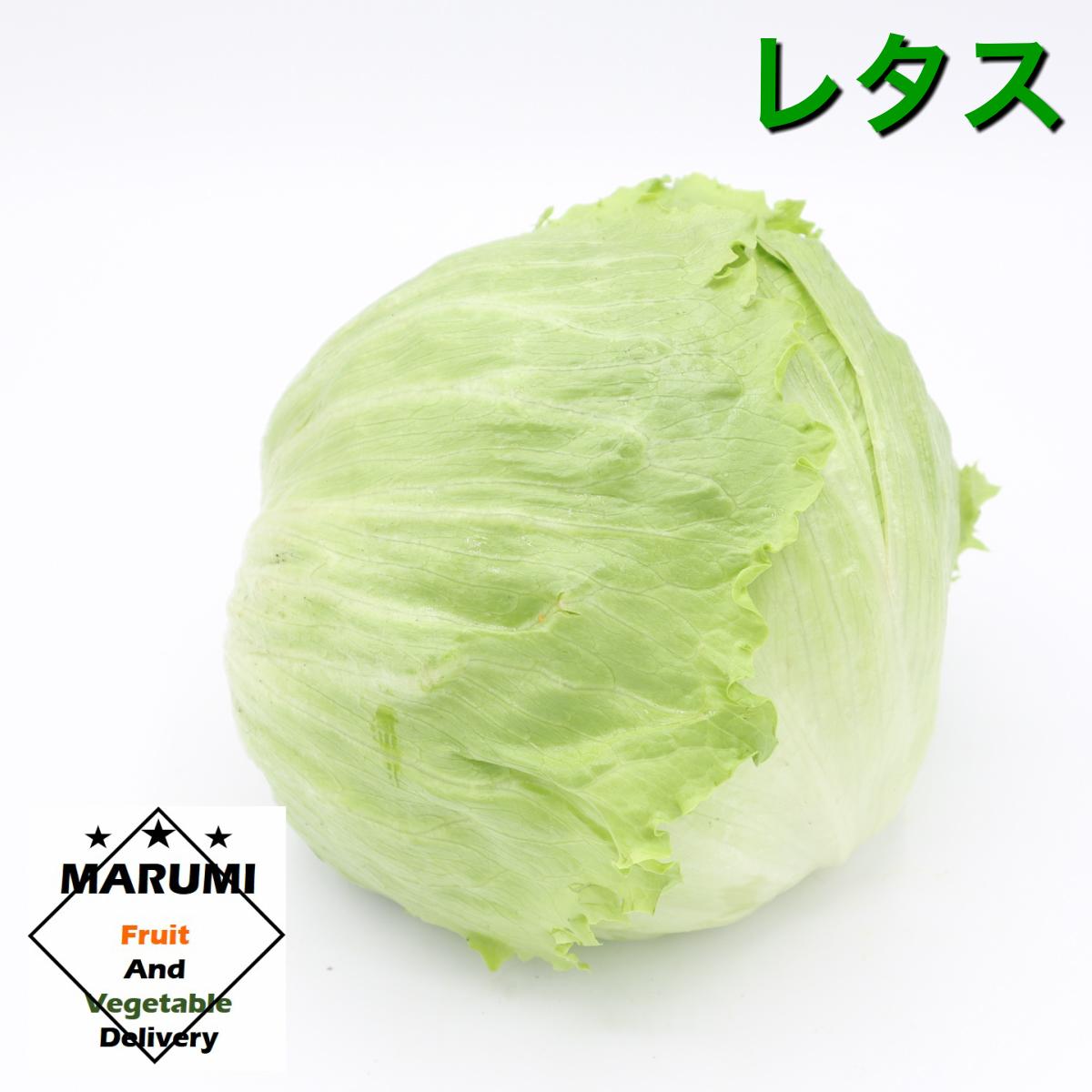 安心 安全の野菜をお届けします 賜物 レタス1玉 セット野菜と同時購入で送料無料 長野 茨城 千葉 静岡 お見舞い