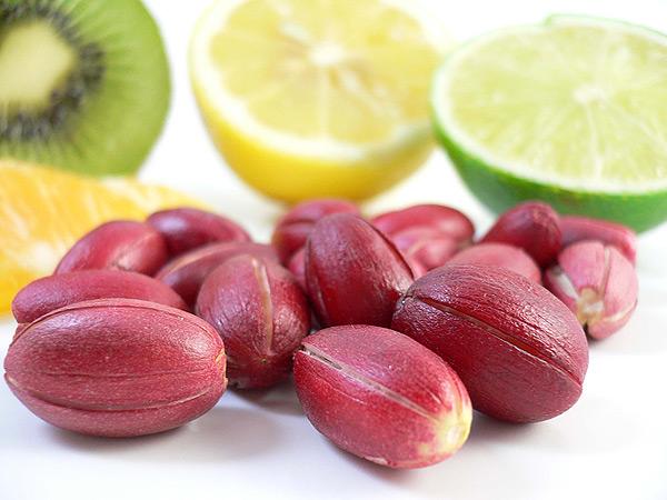 기적의 열매: 7000508fs2gm