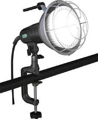 ハタヤ 42W LED作業灯 100V 42W 10m電線付【RXL10W】 販売単位:1台(入り数:-)JAN[4930510312835](ハタヤ 投光器) (株)ハタヤリミテッド【05P03Dec16】