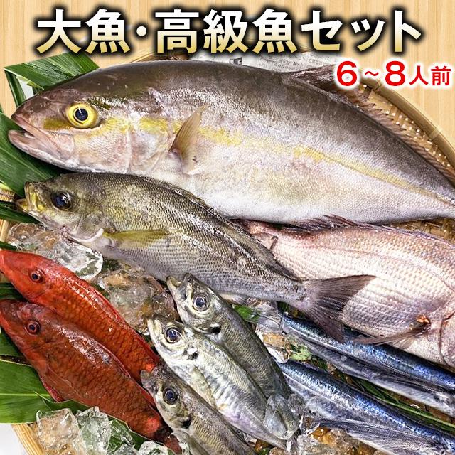 五島列島の小魚セット