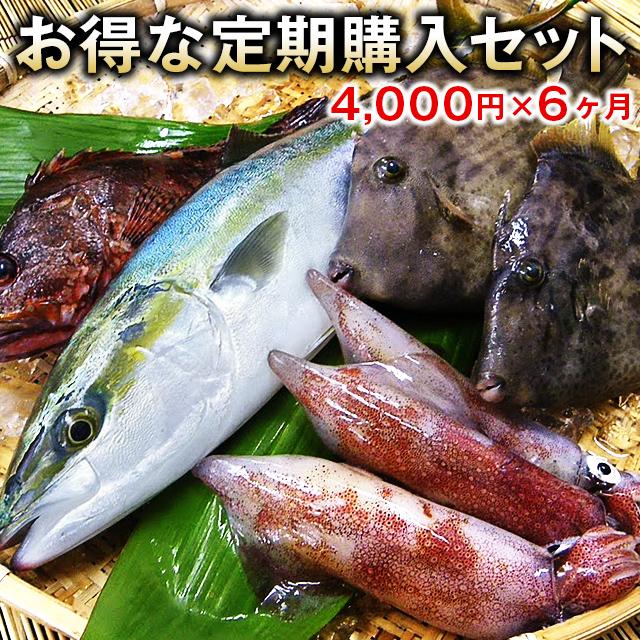 五島列島の鮮魚定期セット
